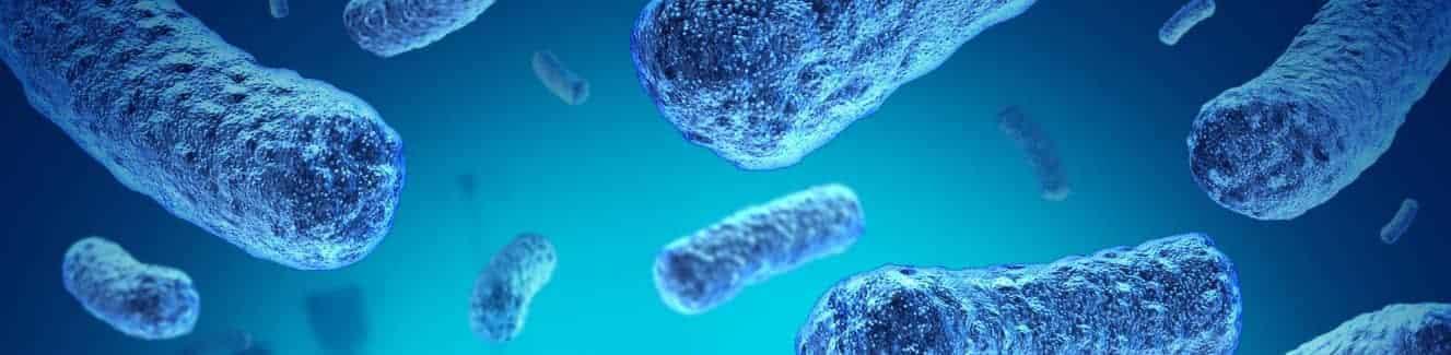 bakterie ve vodě