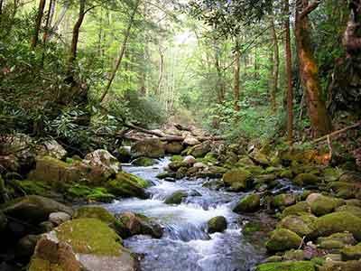 Vodny kamen v horninach